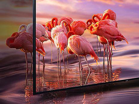 دقت رنگ 100% در تلویزیون سامسونگ Q60R